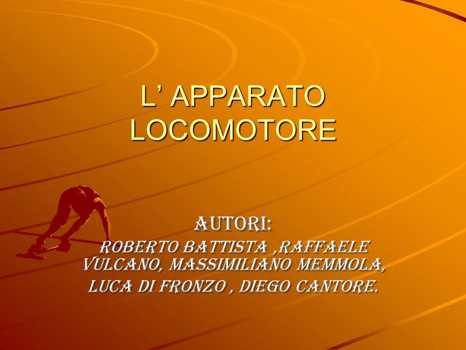 Autori: Roberto Battista,Raffaele Vulcano, Massimiliano Memmola, Luca Di fronzo, Diego Cantore. L APPARATO LOCOMOTORE