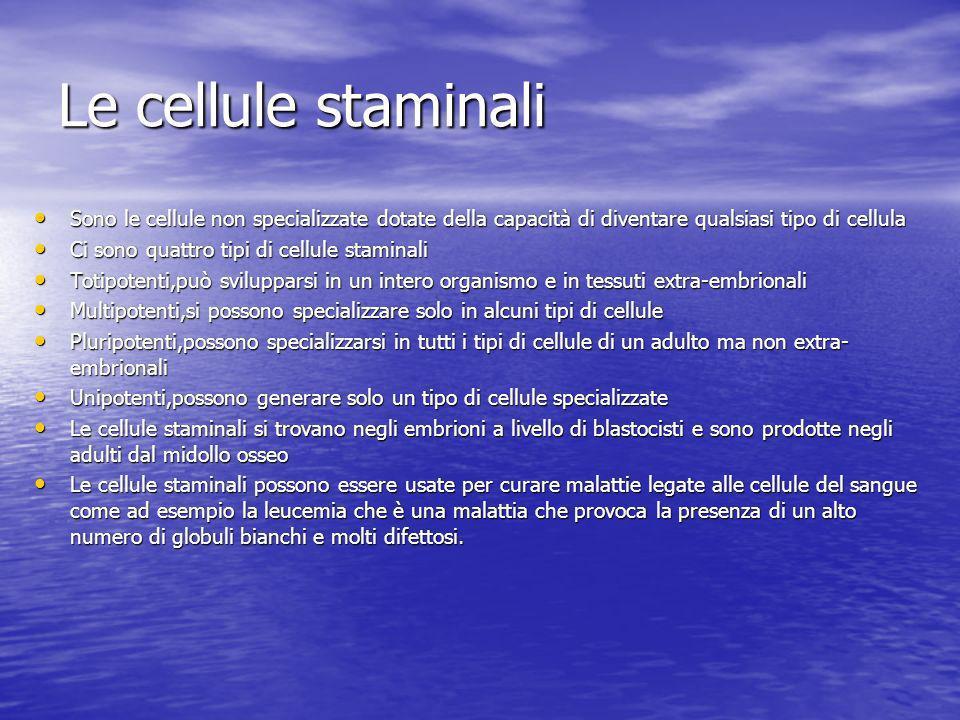 Le cellule staminali Sono le cellule non specializzate dotate della capacità di diventare qualsiasi tipo di cellula Sono le cellule non specializzate