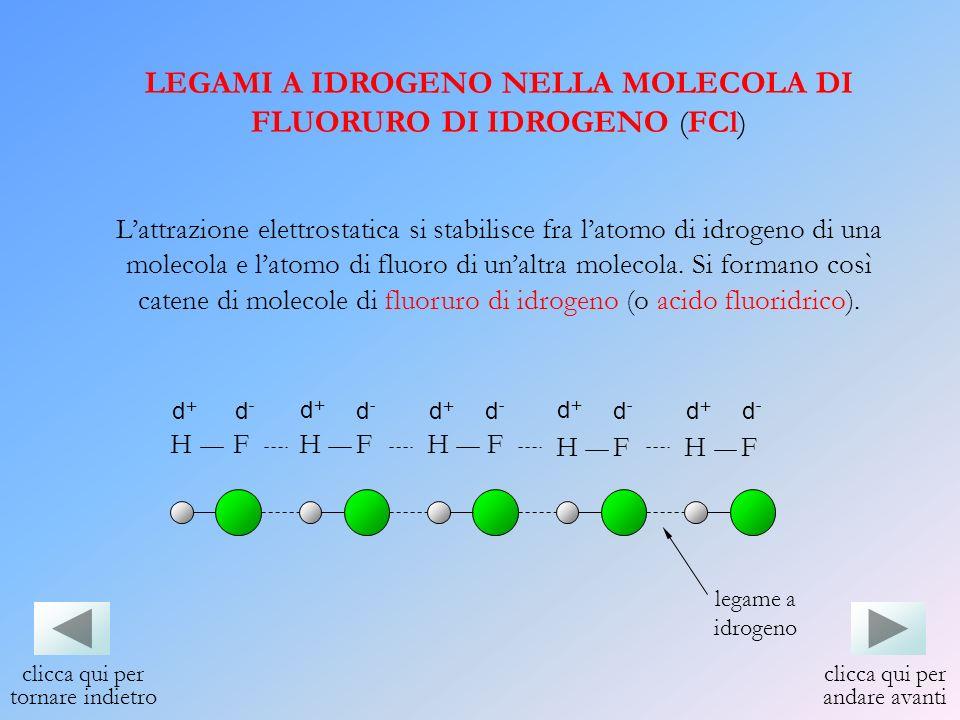 LEGAMI A IDROGENO NELLA MOLECOLA DI FLUORURO DI IDROGENO (FCl) Lattrazione elettrostatica si stabilisce fra latomo di idrogeno di una molecola e latom
