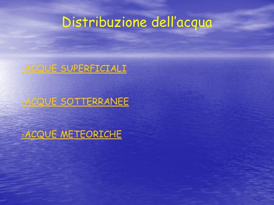 Tra le ACQUE SUPERFICIALI abbiamo: LE ACQUE DOLCI ( fiumi, laghi) e quelle SALATE ( mari ).