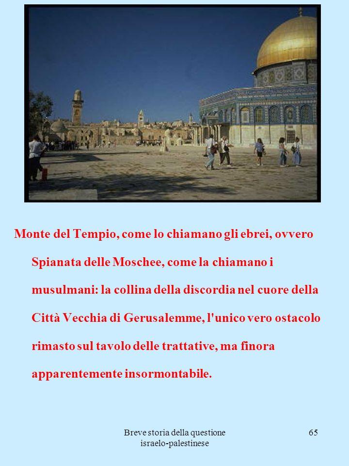 Breve storia della questione israelo-palestinese 65 Monte del Tempio, come lo chiamano gli ebrei, ovvero Spianata delle Moschee, come la chiamano i mu