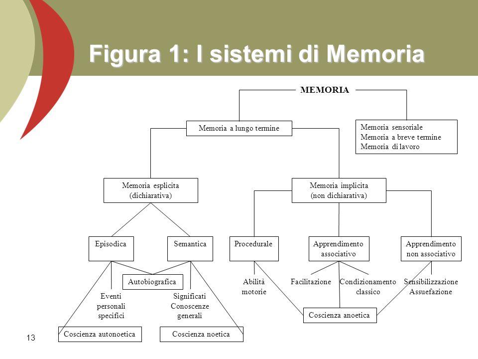 13 Figura 1: I sistemi di Memoria MEMORIA Memoria a lungo termine Memoria sensoriale Memoria a breve termine Memoria di lavoro Memoria esplicita (dich