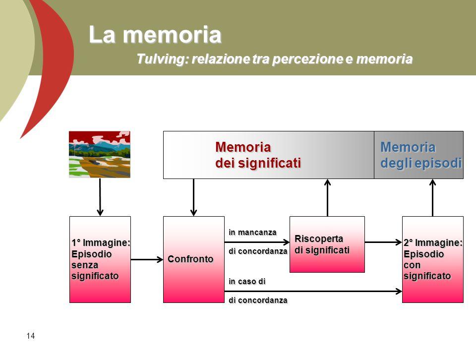 14 La memoria Tulving: relazione tra percezione e memoria Memoria Memoria dei significati degli episodi ConfrontoRiscoperta di significati 2° Immagine