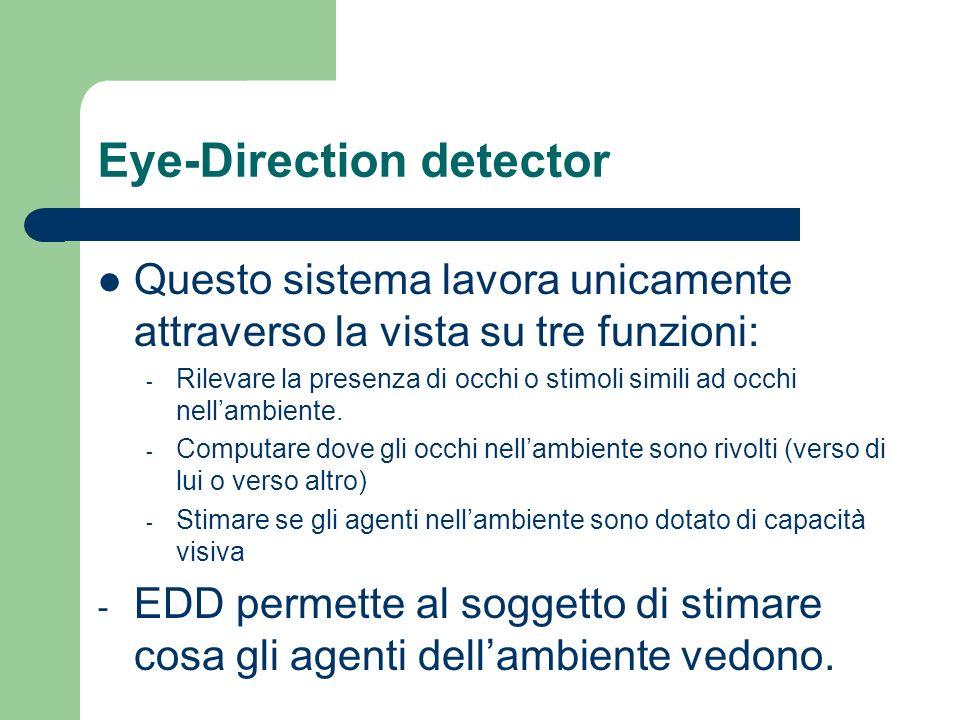 Eye-Direction detector Questo sistema lavora unicamente attraverso la vista su tre funzioni: - Rilevare la presenza di occhi o stimoli simili ad occhi