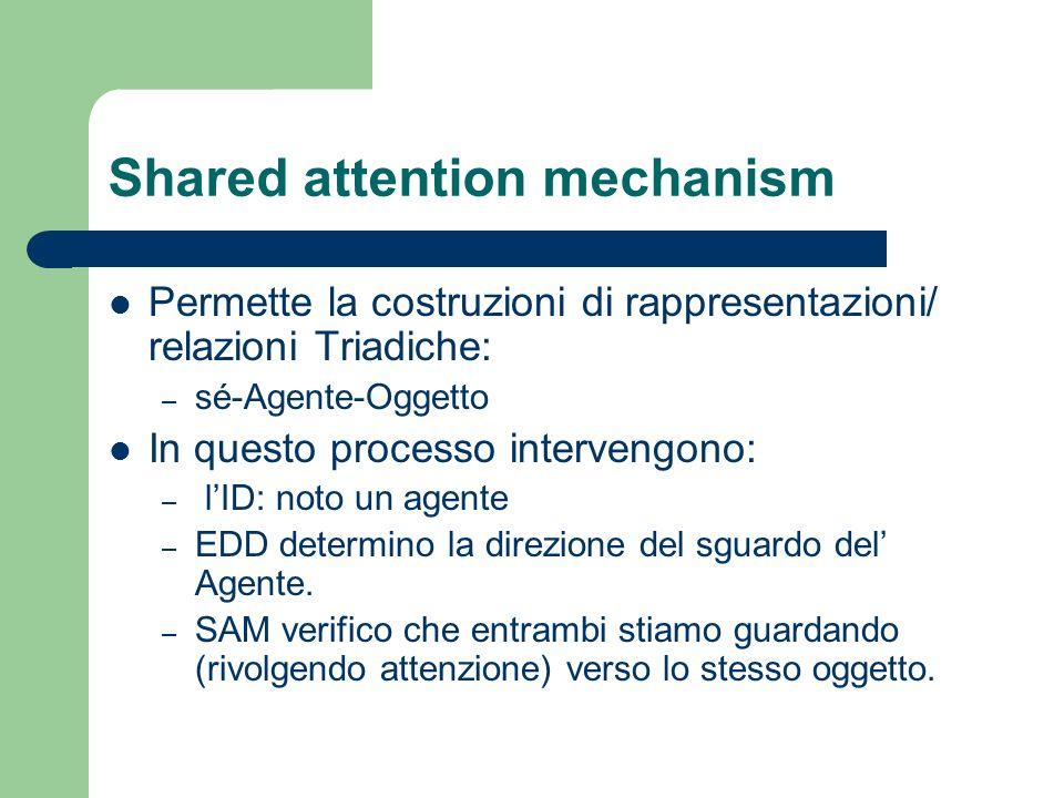 Shared attention mechanism Permette la costruzioni di rappresentazioni/ relazioni Triadiche: – sé-Agente-Oggetto In questo processo intervengono: – lI