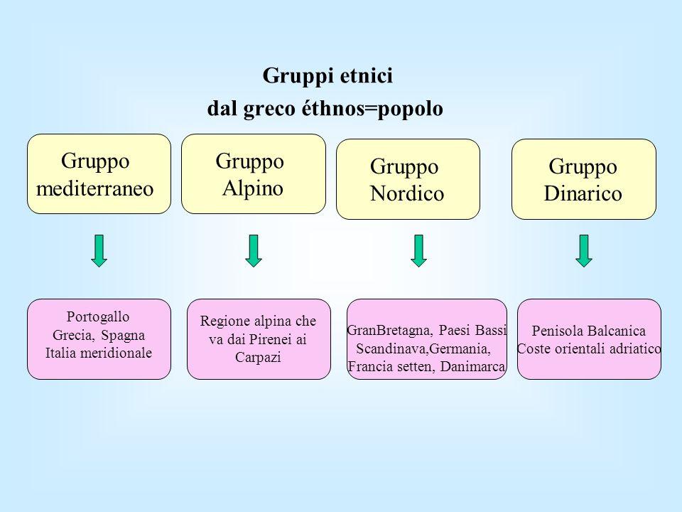 Gruppi etnici dal greco éthnos=popolo Gruppo mediterraneo Gruppo Alpino Gruppo Nordico Gruppo Dinarico Portogallo Grecia, Spagna Italia meridionale Re