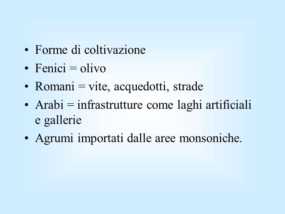 Forme di coltivazione Fenici = olivo Romani = vite, acquedotti, strade Arabi = infrastrutture come laghi artificiali e gallerie Agrumi importati dalle