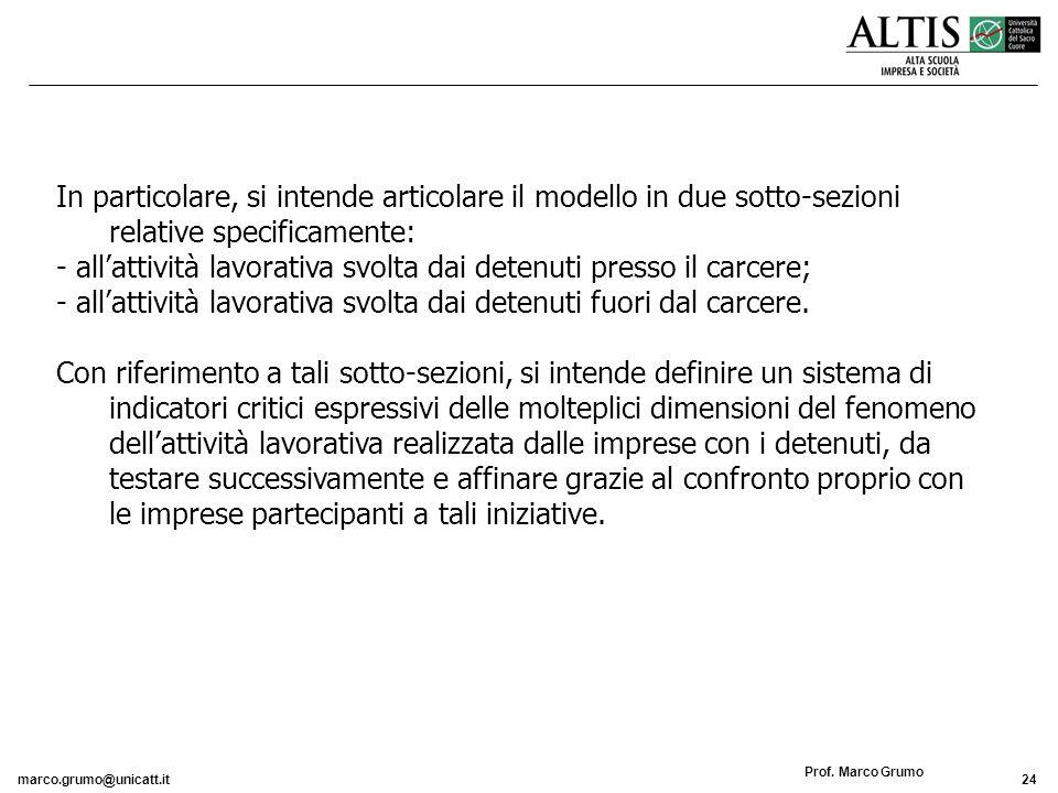 marco.grumo@unicatt.it24 Prof. Marco Grumo In particolare, si intende articolare il modello in due sotto-sezioni relative specificamente: - allattivit