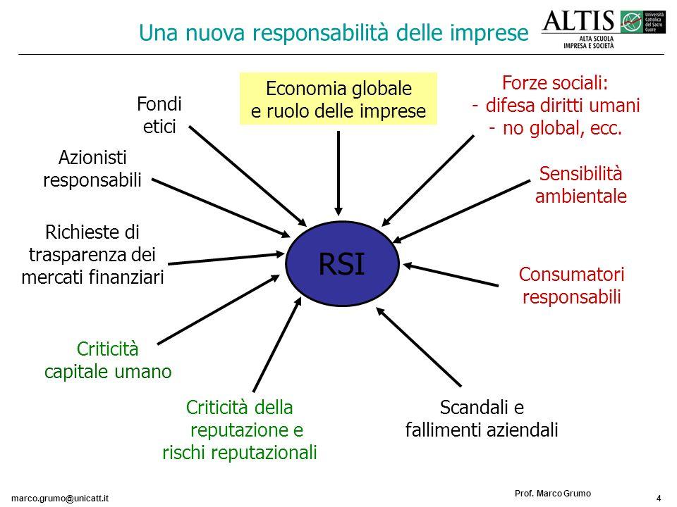 marco.grumo@unicatt.it4 Prof. Marco Grumo Una nuova responsabilità delle imprese Azionisti responsabili Criticità capitale umano Scandali e fallimenti