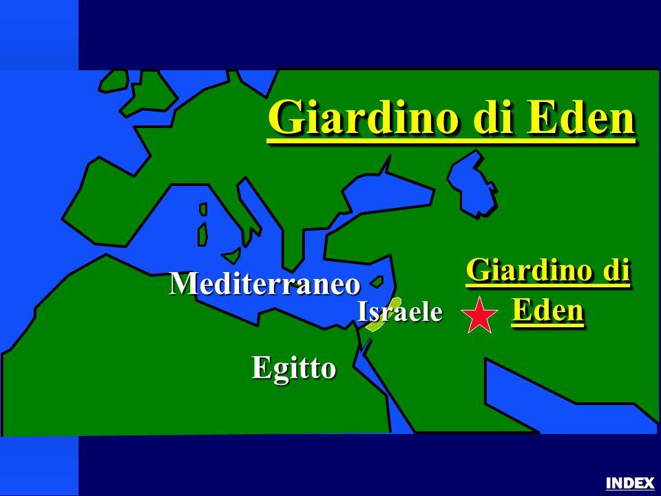 Garden of Eden INDEX Mediterraneo Egitto Giardino di Eden Eden Giardino di Eden Israele