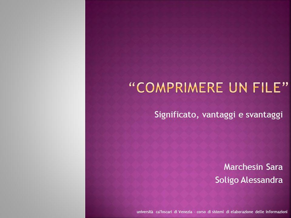 Significato, vantaggi e svantaggi Marchesin Sara Soligo Alessandra università ca'foscari di Venezia - corso di sistemi di elaborazione delle informazi