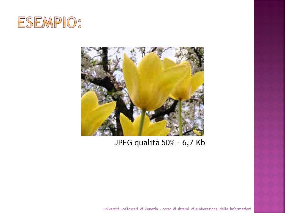 università ca'foscari di Venezia - corso di sistemi di elaborazione delle informazioni JPEG qualità 50% - 6,7 Kb