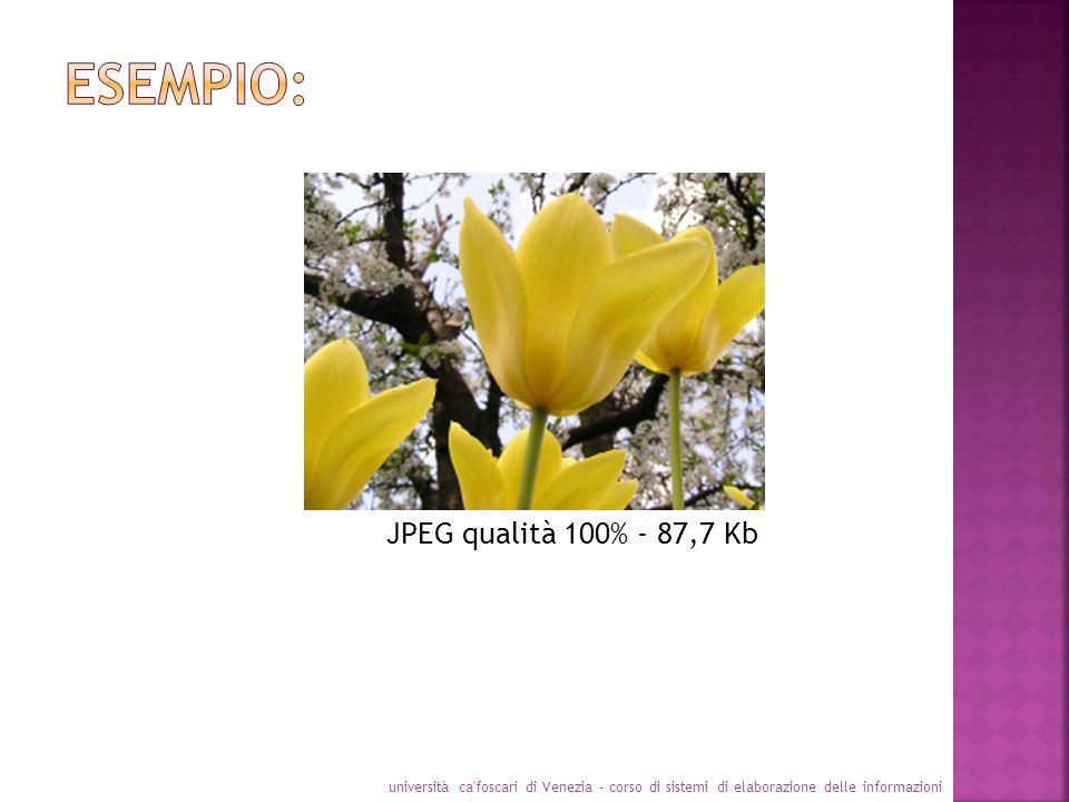 università ca'foscari di Venezia - corso di sistemi di elaborazione delle informazioni JPEG qualità 100% - 87,7 Kb