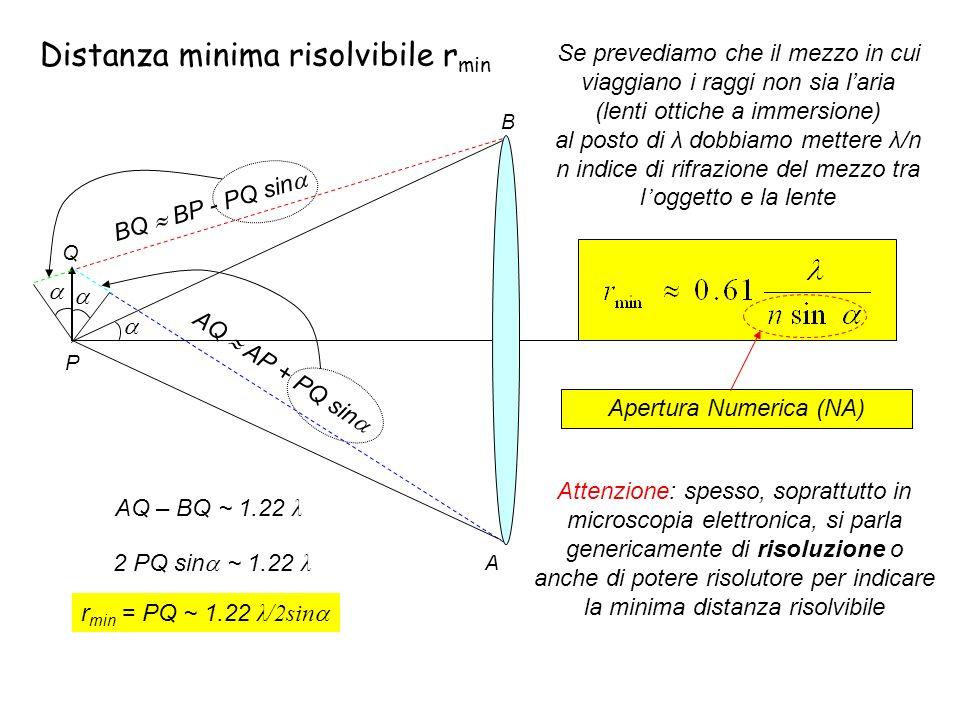 AQ – BQ ~ 1.22 λ 2 PQ sin ~ 1.22 λ A B P Q AQ AP + PQ sin BQ BP - PQ sin r min = PQ ~ 1.22 λ/2sin Distanza minima risolvibile r min Se prevediamo che