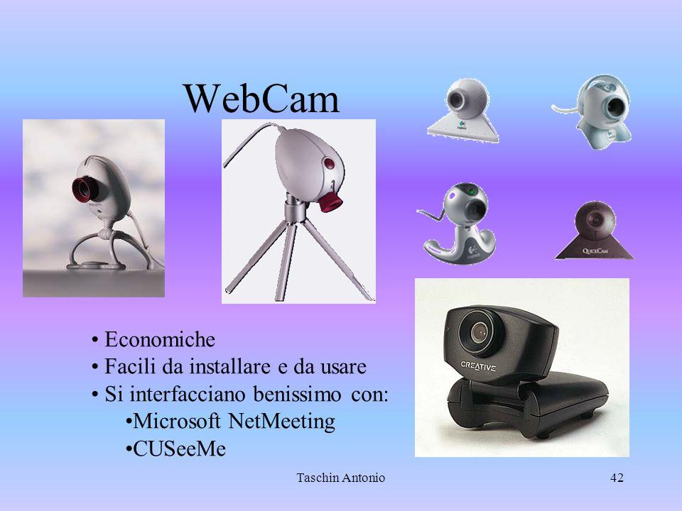 Taschin Antonio42 WebCam Economiche Facili da installare e da usare Si interfacciano benissimo con: Microsoft NetMeeting CUSeeMe