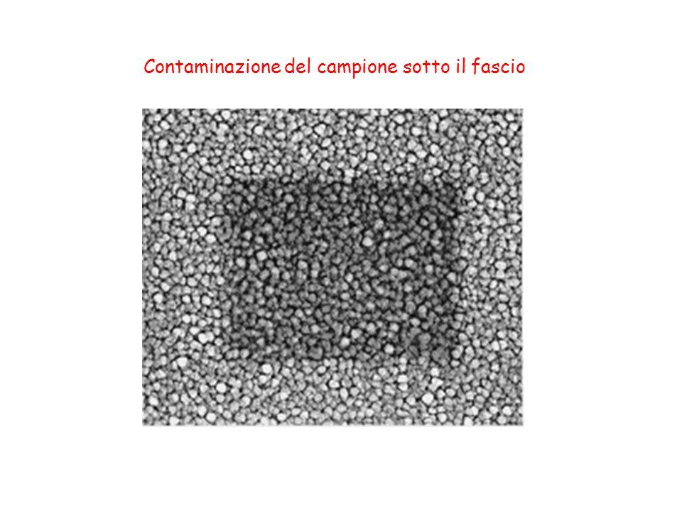 Contaminazione del campione sotto il fascio