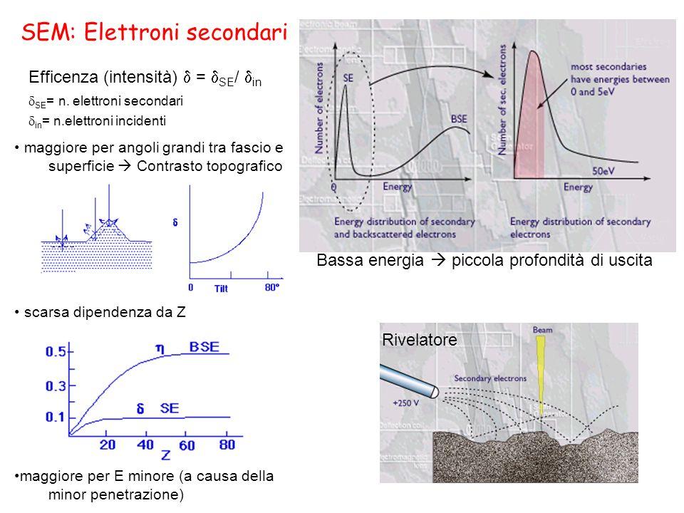 SEM: Elettroni secondari maggiore per angoli grandi tra fascio e superficie Contrasto topografico scarsa dipendenza da Z maggiore per E minore (a caus