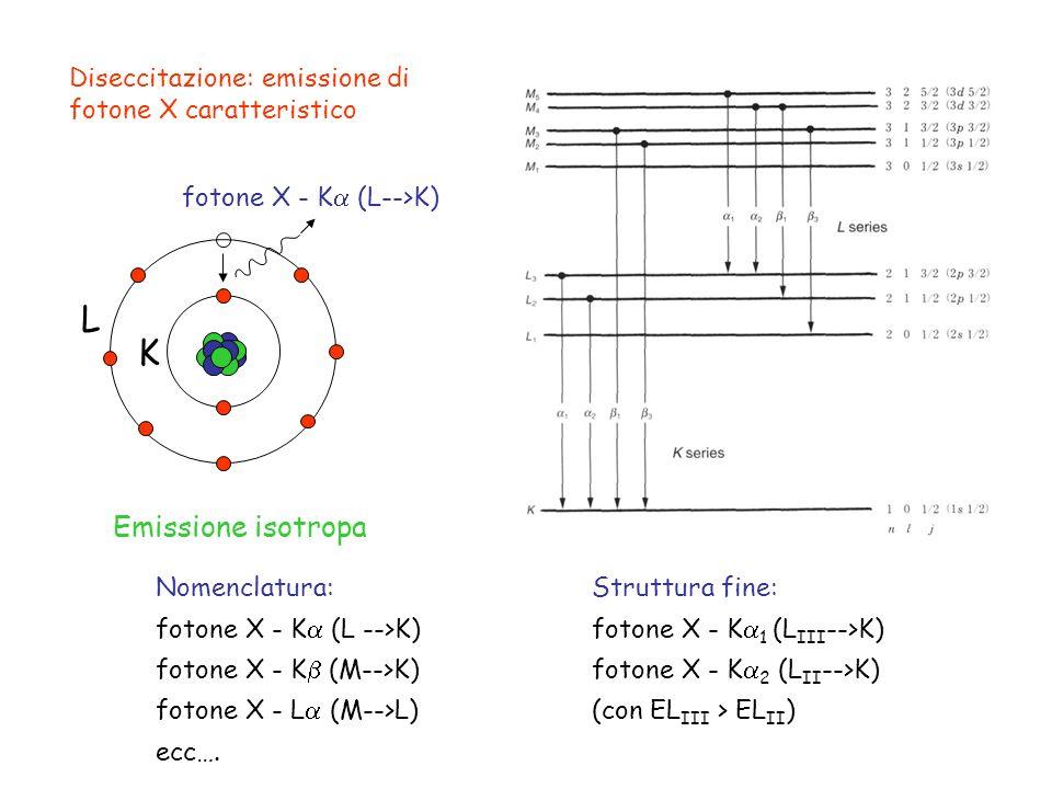 Diseccitazione: emissione di fotone X caratteristico L K fotone X - K (L-->K) Emissione isotropa Struttura fine: fotone X - K 1 (L III -->K) fotone X