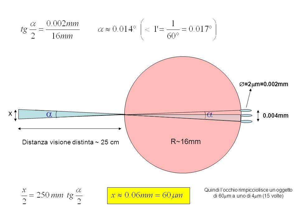 0.004mm =2 m=0.002mm R~16mm Distanza visione distinta ~ 25 cm x Quindi locchio rimpicciolisce un oggetto di 60 m a uno di 4 m (15 volte)