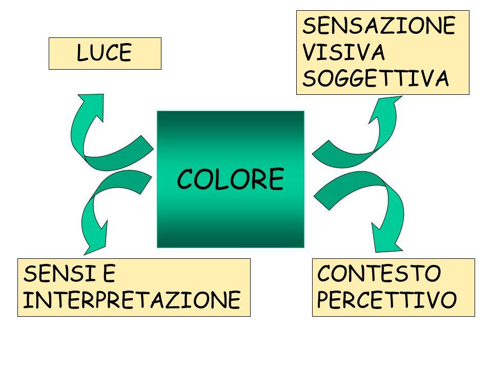 Percezione visiva: 1.acquisizione immagine 2.elaborazione3.interpretazione