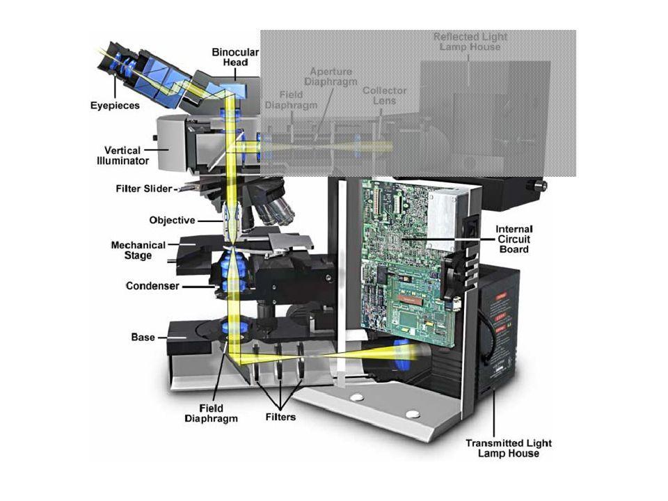 In riflessione (epi-illuminazione) lobiettivo fa anche da condensatore.