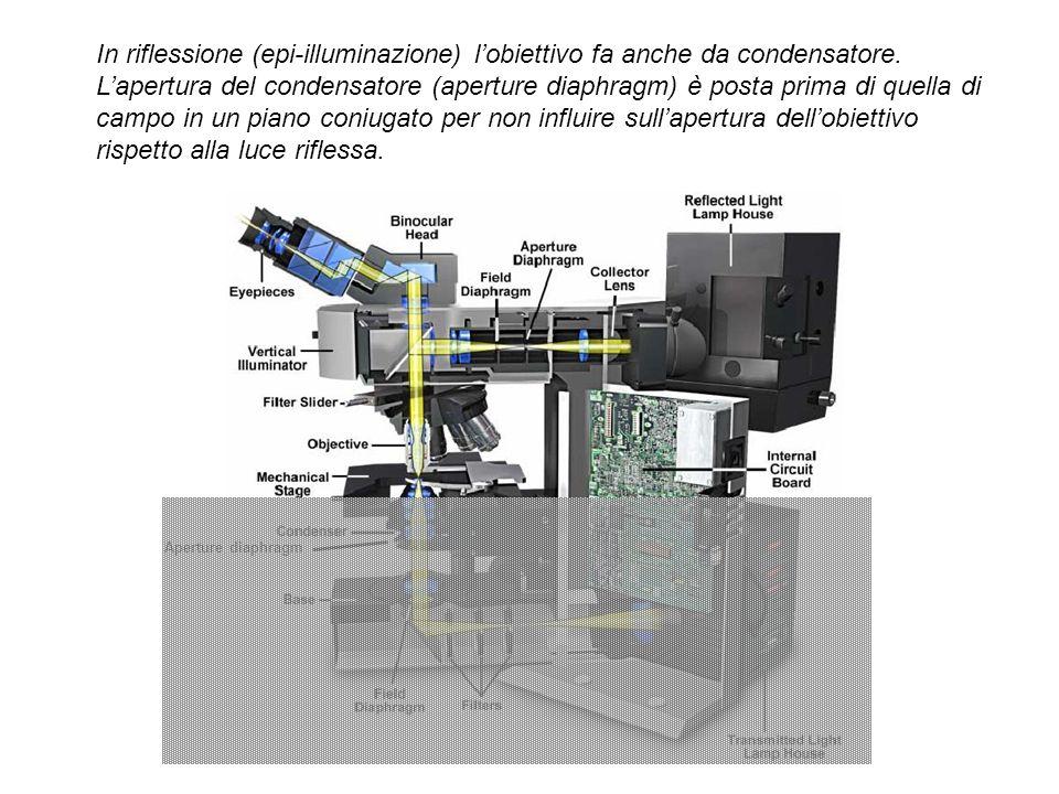 In riflessione (epi-illuminazione) lobiettivo fa anche da condensatore. Lapertura del condensatore (aperture diaphragm) è posta prima di quella di cam