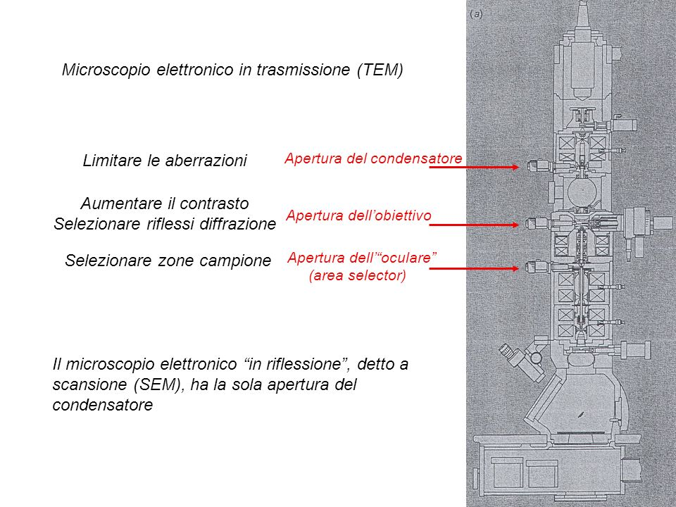 Apertura del condensatore Apertura dellobiettivo Apertura delloculare (area selector) Microscopio elettronico in trasmissione (TEM) Il microscopio ele