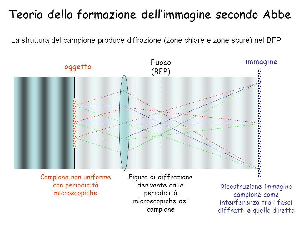 Formazione dellimmagine (diffrazione da un reticolo) Periodicità uguali in punti diversi del campione danno luogo a raggi diffratti nelle stesse direzioni (paralleli punto in BFP) Periodicità con dimensione minore danno punti più distanziati su BFP