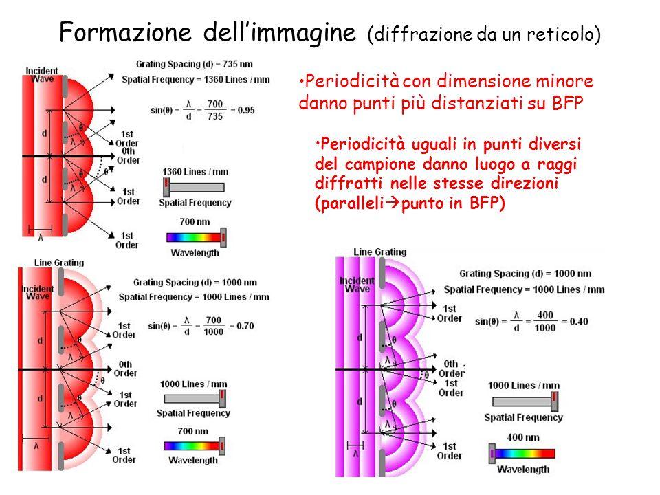 Formazione dellimmagine (diffrazione da un reticolo) Periodicità uguali in punti diversi del campione danno luogo a raggi diffratti nelle stesse direz