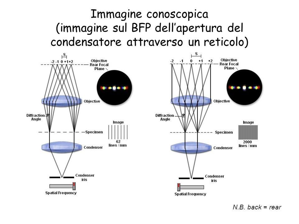 Immagine conoscopica (immagine sul BFP dellapertura del condensatore attraverso un reticolo) N.B. back = rear