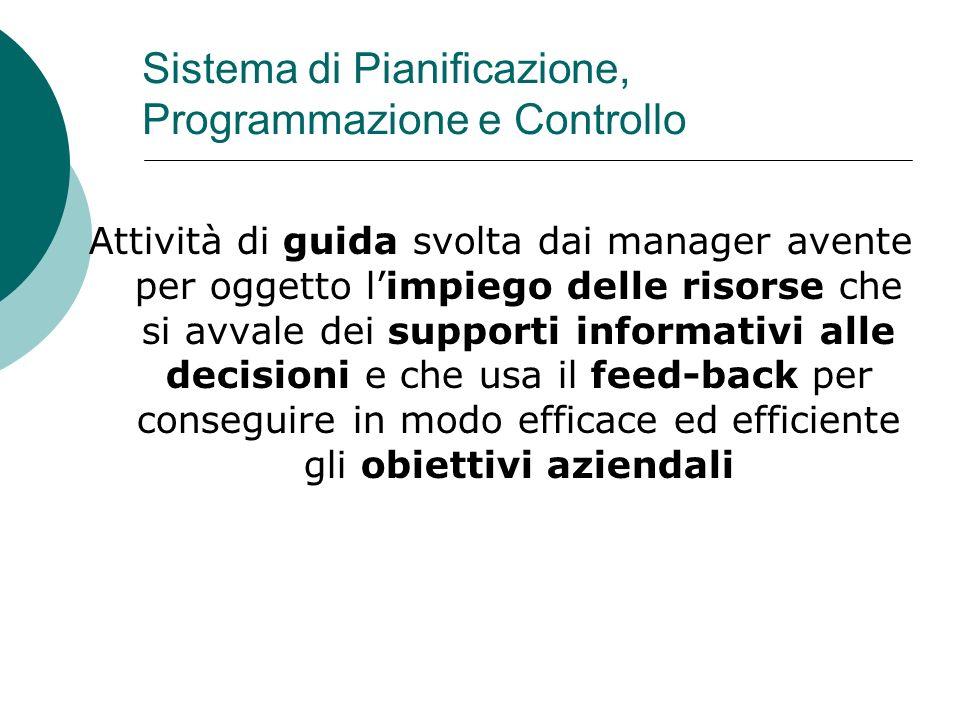 Sistema di Pianificazione, Programmazione e Controllo Attività di guida svolta dai manager avente per oggetto limpiego delle risorse che si avvale dei