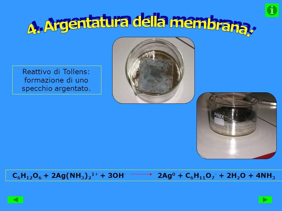 Reattivo di Tollens: formazione di uno specchio argentato.