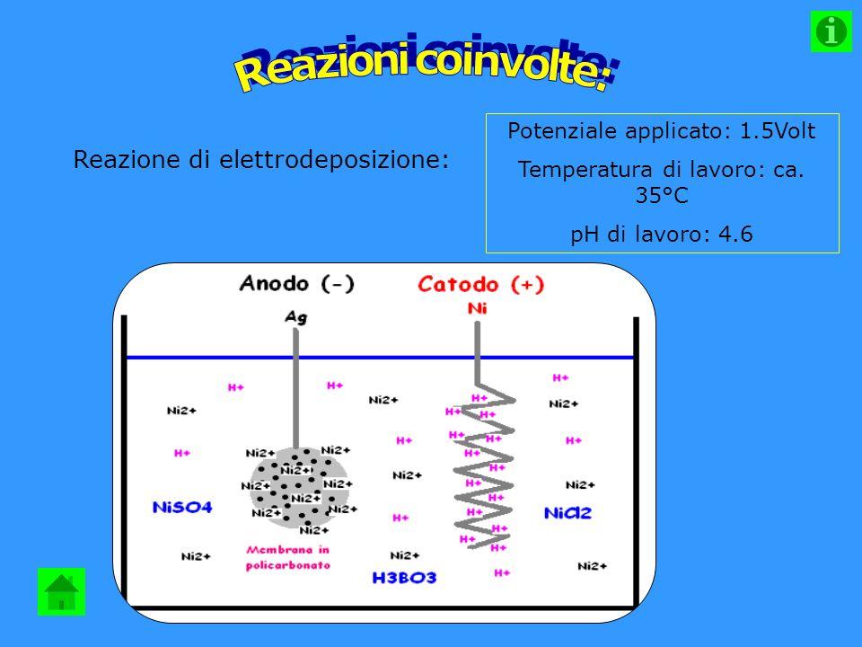 Reazione di elettrodeposizione: Potenziale applicato: 1.5Volt Temperatura di lavoro: ca.
