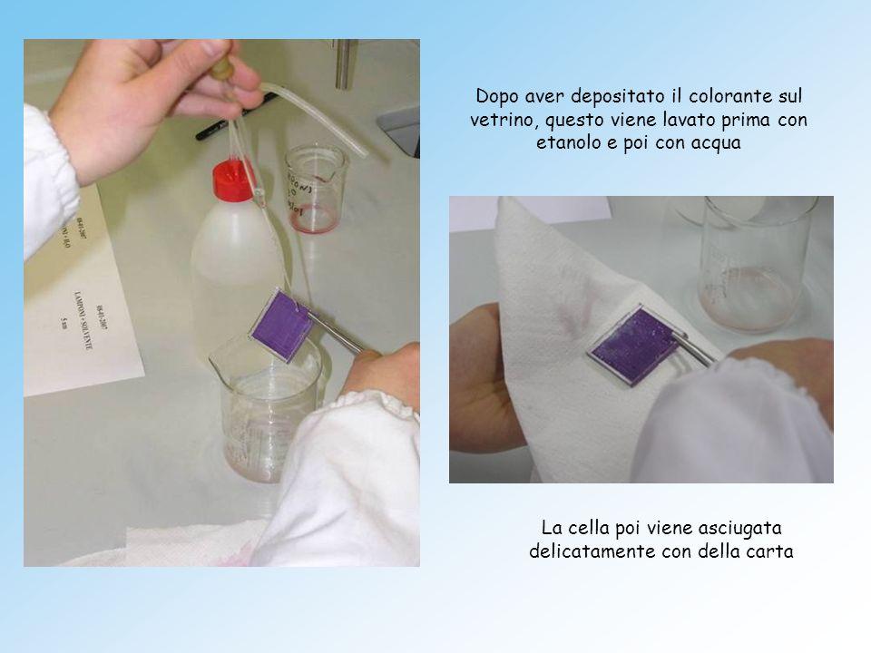 Dopo aver depositato il colorante sul vetrino, questo viene lavato prima con etanolo e poi con acqua La cella poi viene asciugata delicatamente con de