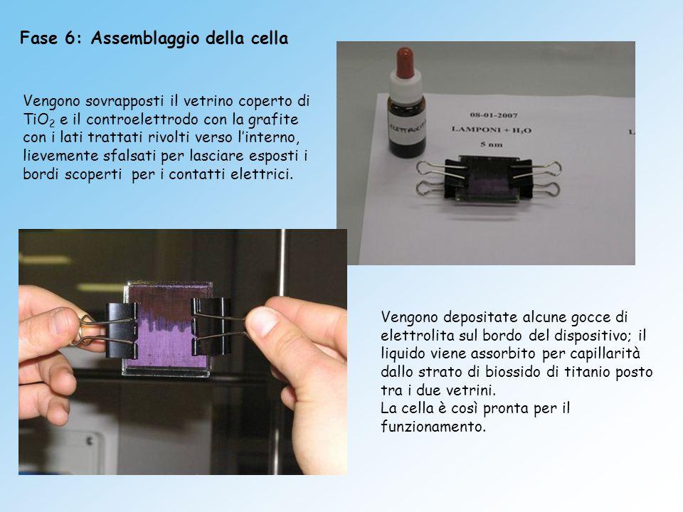 Fase 6: Assemblaggio della cella Vengono sovrapposti il vetrino coperto di TiO 2 e il controelettrodo con la grafite con i lati trattati rivolti verso