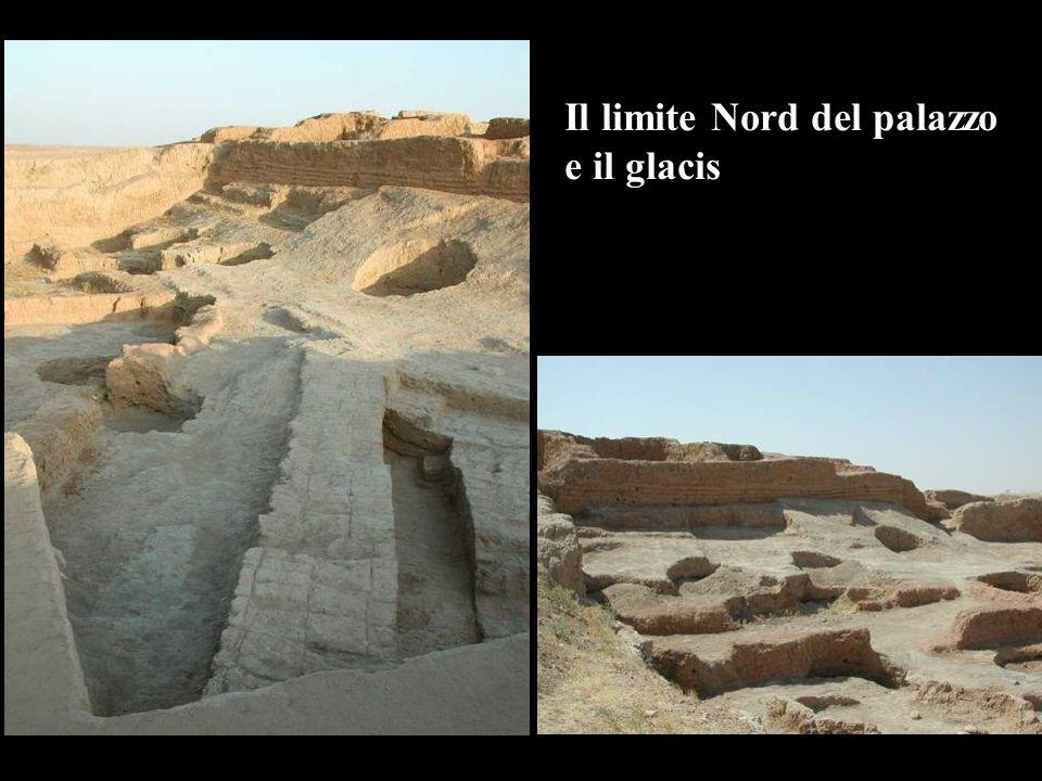 Il limite Nord del palazzo e il glacis