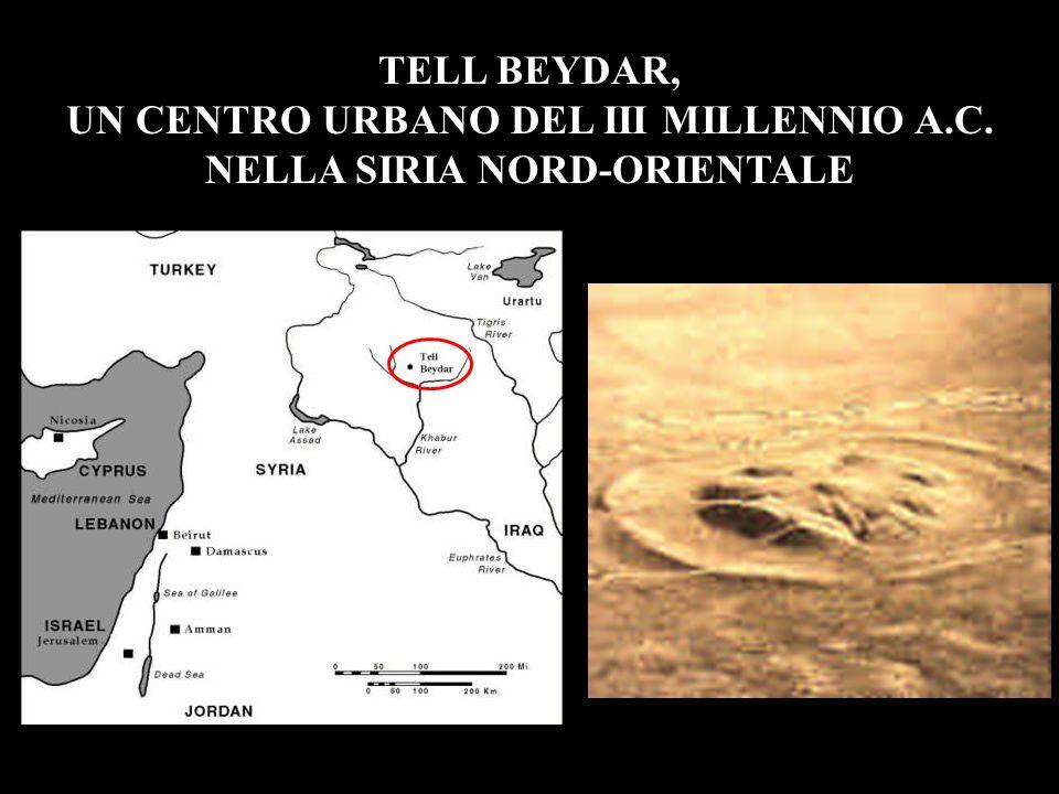 IL SITO TELL BEYDAR, UN CENTRO URBANO DEL III MILLENNIO A.C. NELLA SIRIA NORD-ORIENTALE