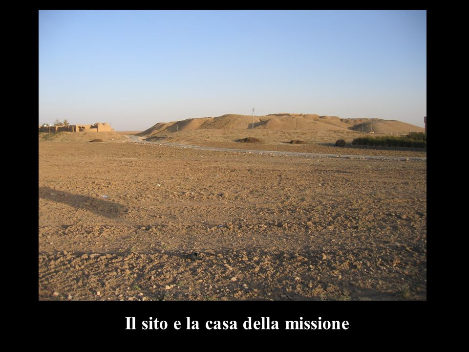 Pianta del sito con le aree di scavo
