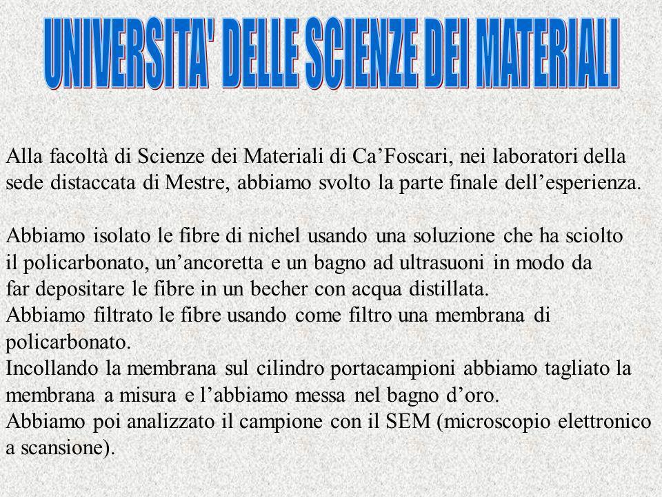 Alla facoltà di Scienze dei Materiali di CaFoscari, nei laboratori della sede distaccata di Mestre, abbiamo svolto la parte finale dellesperienza.