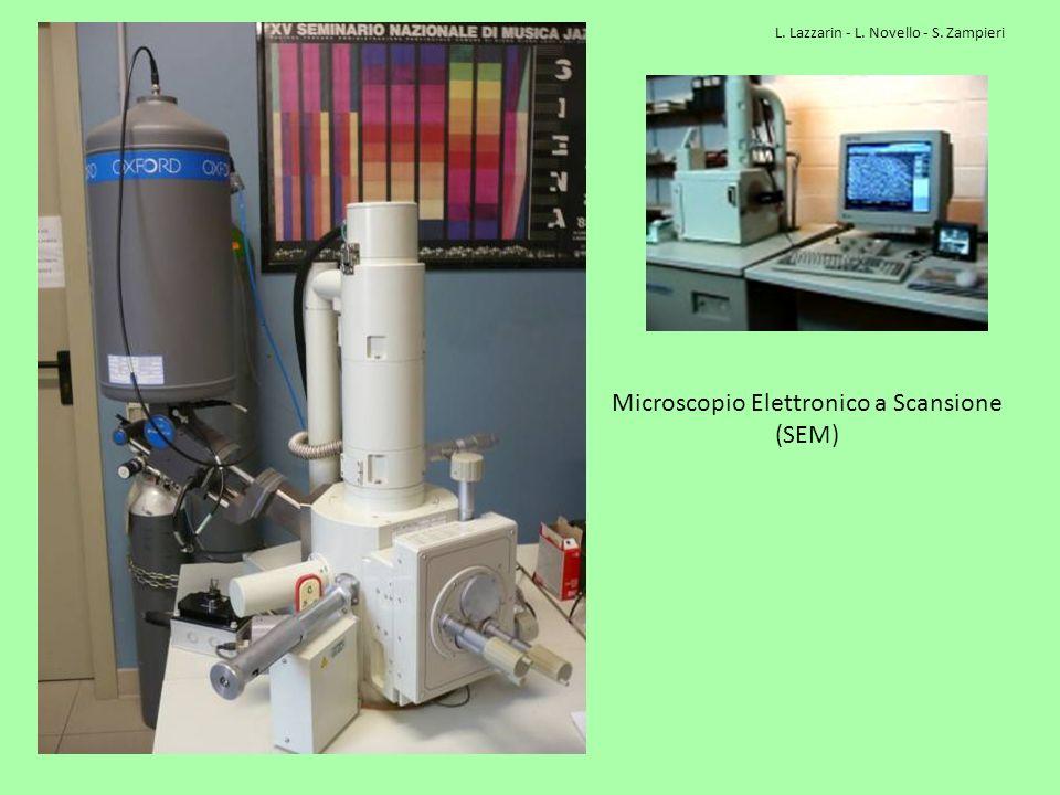 Microscopio Elettronico a Scansione (SEM) L. Lazzarin - L. Novello - S. Zampieri