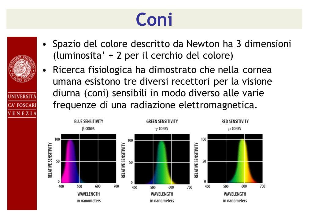 Coni Spazio del colore descritto da Newton ha 3 dimensioni (luminosita + 2 per il cerchio del colore) Ricerca fisiologica ha dimostrato che nella corn
