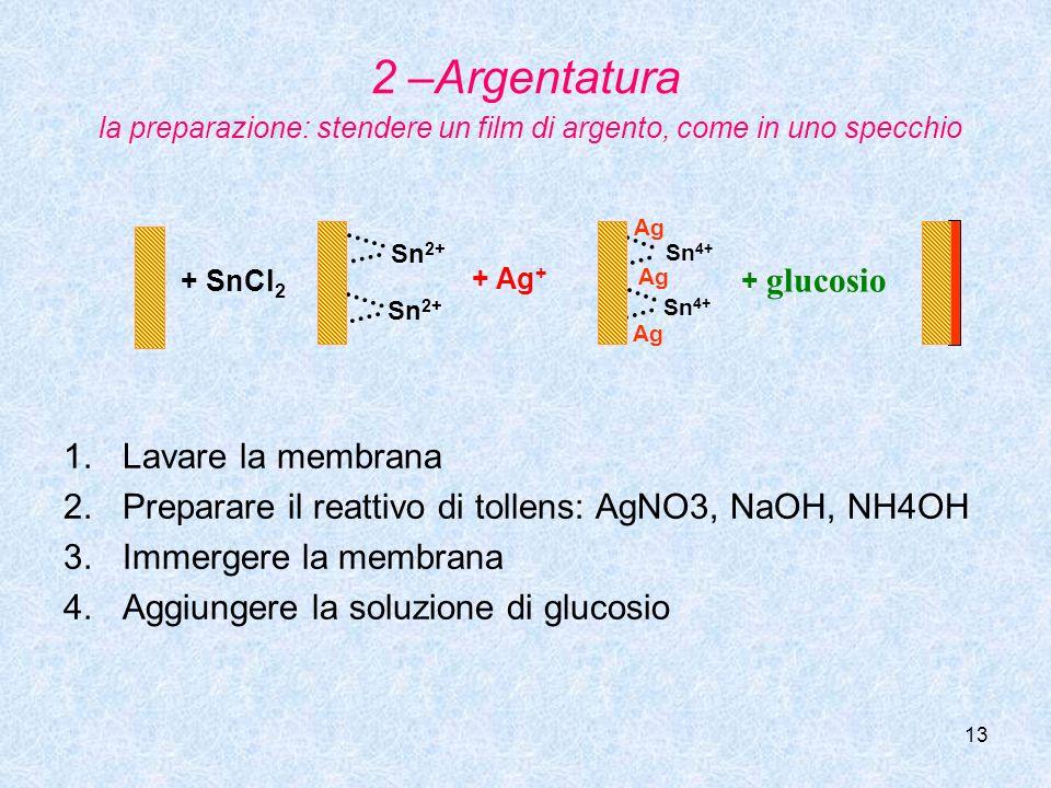 13 2 –Argentatura la preparazione: stendere un film di argento, come in uno specchio 1.Lavare la membrana 2.Preparare il reattivo di tollens: AgNO3, N