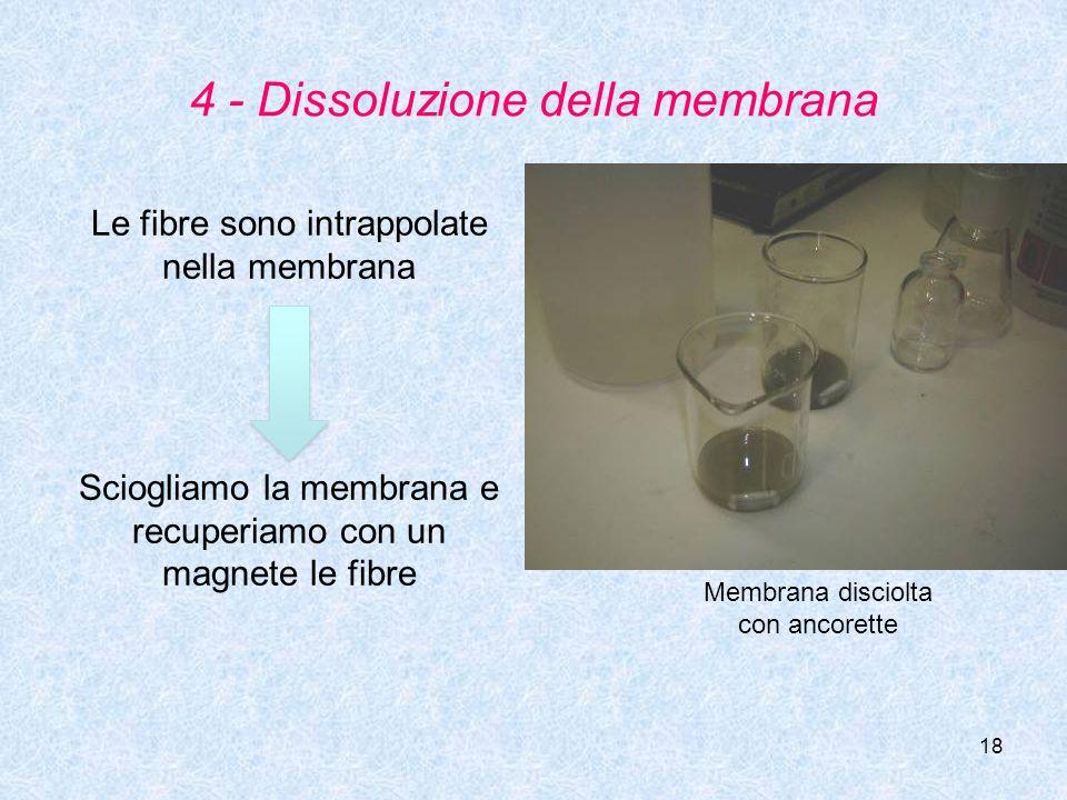 18 4 - Dissoluzione della membrana Le fibre sono intrappolate nella membrana Membrana disciolta con ancorette Sciogliamo la membrana e recuperiamo con