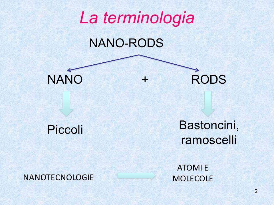 2 La terminologia NANO-RODS NANORODS Piccoli Bastoncini, ramoscelli + NANOTECNOLOGIE ATOMI E MOLECOLE