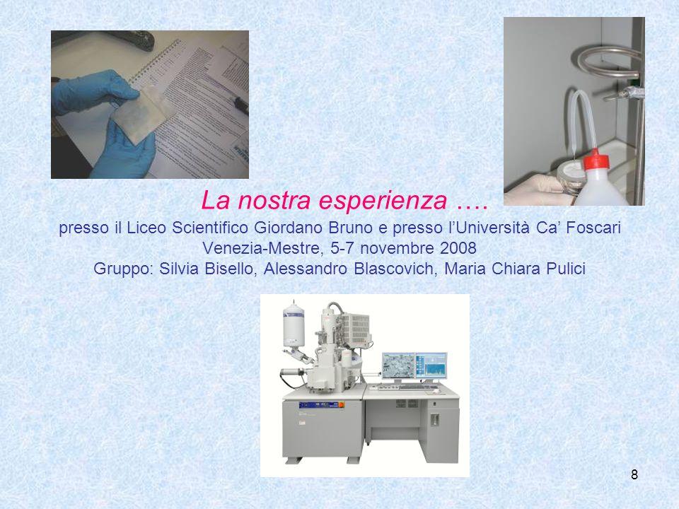 8 La nostra esperienza …. presso il Liceo Scientifico Giordano Bruno e presso lUniversità Ca Foscari Venezia-Mestre, 5-7 novembre 2008 Gruppo: Silvia