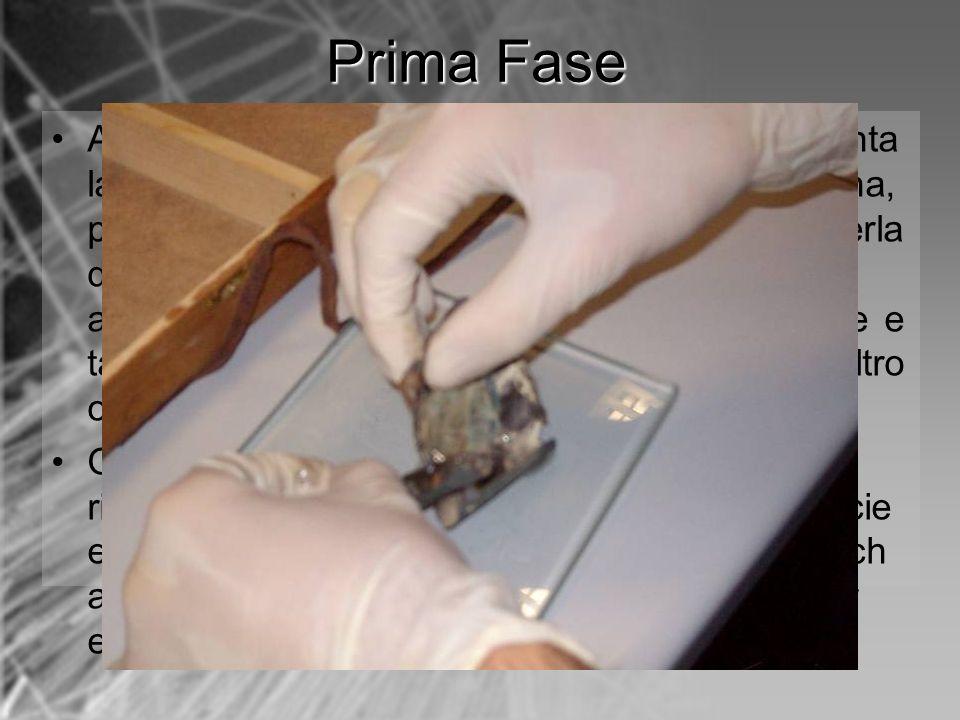Al termine del processo elettrochimico, si smonta la cella e si rimuove delicatamente la membrana, ponendola sul supporto di vetro. Prima di toglierla