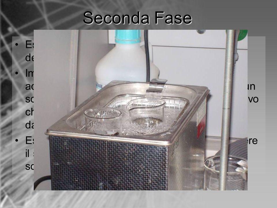 Estrarre lancoretta e attendere levaporazione del diclorometano rimasto; Immergere lancoretta in un becker pieno di acqua distillata, quindi immergere