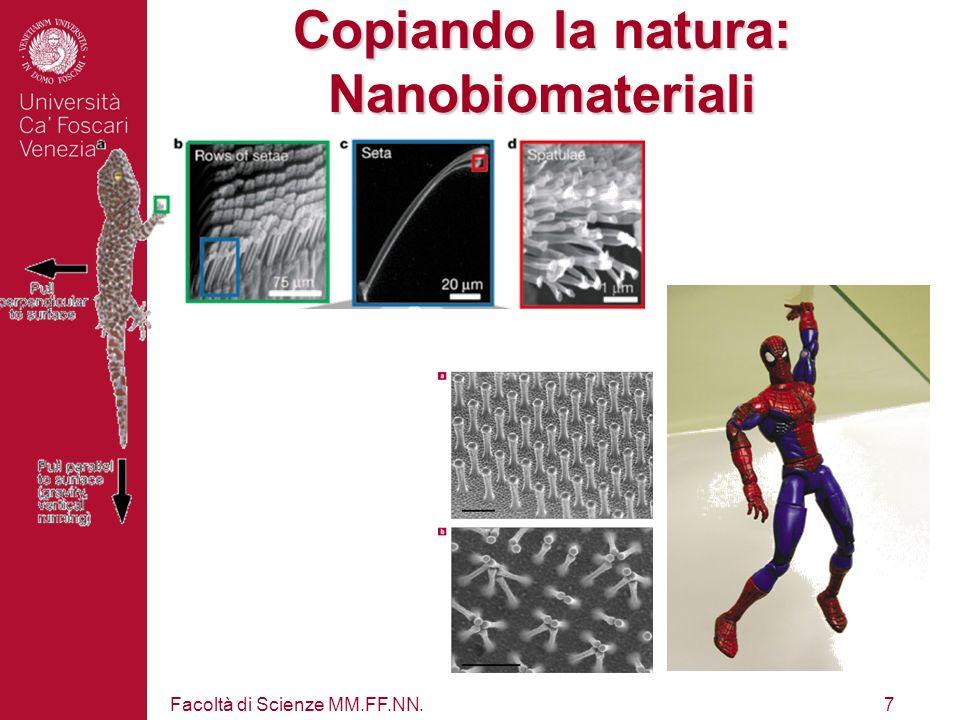 Facoltà di Scienze MM.FF.NN.7 Copiando la natura: Nanobiomateriali