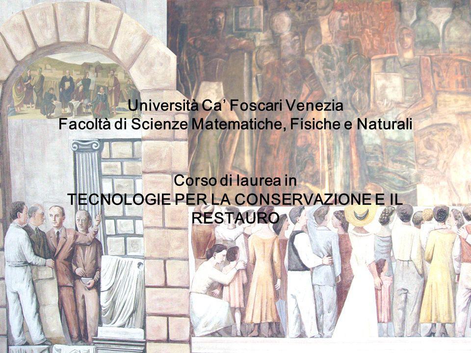 Università Ca Foscari Venezia Facoltà di Scienze Matematiche, Fisiche e Naturali Corso di laurea in TECNOLOGIE PER LA CONSERVAZIONE E IL RESTAURO