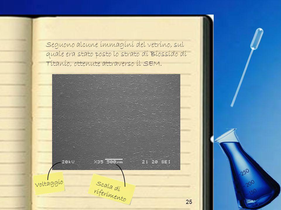 25 Seguono alcune immagini del vetrino, sul quale era stato posto lo strato di Biossido di Titanio, ottenute attraverso il SEM. Voltaggio Scala di rif